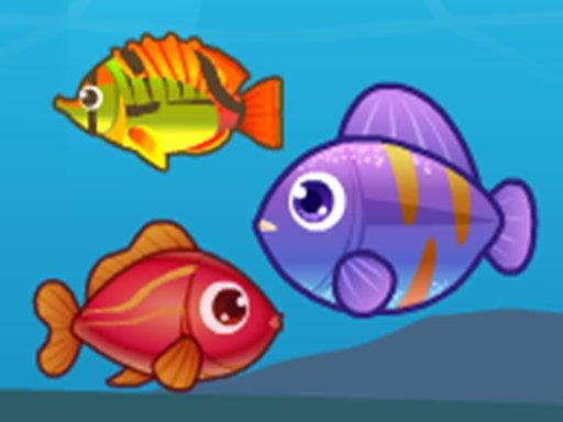 Jogo Big Fish Eat Small Fish 2