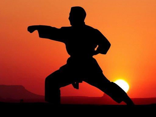 Jogo Karate Sunset Warriors